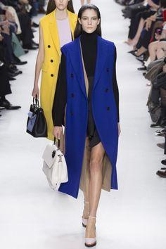 Défilé Christian Dior prêt-à-porter automne-hiver 2014-2015|42