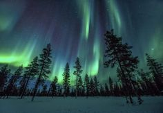 Looking for a true winter wonderland to spend your winter holiday? Look no further than Lapland. This Finnish region is as close to a winter fairyland than Lappland, Aurora Borealis, Design Despace, Winter Szenen, Winter Holiday, Lapland Finland, Next Holiday, Landscape Pictures, Cool Landscapes