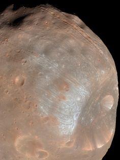 Phobos, moon of Mars.  #mars #phobos #moon #space