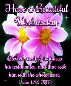 Psalm 119:2 (1611 KJV !!!!) HAVE A BEAUTIFUL WEDNESDAY !!!! TESTIMONIES ARE THE LAWS OF GOD AND THEY WAYS THEY ARE KEPT.SO WE CAN HAVE A GOOD TESTIMONY BY KEEPING GOD'S TESTIMONIES !!!!