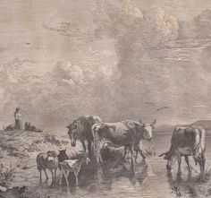 Antique Print Cattle Herd at the Water Viehherde am Wasser (D65) via Grandpa's Market. Click on the image to see more!