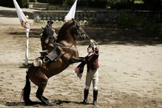 Riders of the Portuguese School of Equestrian Art with an Alter Real stallion, Queluz, Portugal