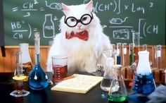 Интересные химические эксперименты, которые можно проводить дома - http://wuzzup.ru/16162.html