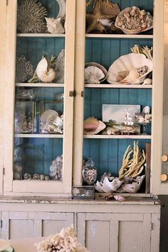 A fairly nice display of shells. Display a few more things that are not shells - a lighthouse, a jar of seaglass, a pelican, a sailor's knot or a buoy - to give a little relief. The blue inside makes the shells pop more (RM) Coastal Style, Coastal Living, Coastal Decor, Do It Yourself Design, Cosy Home, Cabinet Of Curiosities, Cottages By The Sea, Beach House Decor, Home Decor