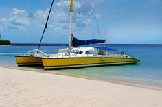 For a limited time, when you book your next trip to Barbados, you can earn up to $400 to spend on island activities like the Tiami Catamaran Day cruise! Find out more: http://www.visitbarbados.org/islandinclusive