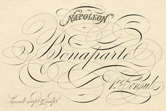 Spencerian Script Napoleon - Pen Flourishing - The Graphics Fairy