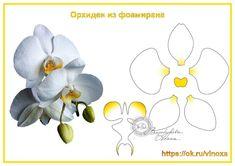 Gallery.ru / Фото #169 - шаблоны цветов-2 - Vladikana