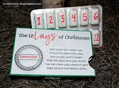 The 12 Lays of Christmas - I did this for hubby last Christmas and he was surprised that I put so much thought into it. It was really fun! Your turn...