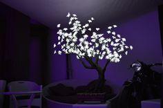 albero a led modello BONSAI altezza mt 0,80 216 leds            consumo 13w