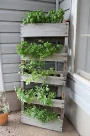 Small Space Container and Herb Garden Ideas Wood Pallet Herb Garden - I will have an herb garden this summer, anyone know the best time to start one?Wood Pallet Herb Garden - I will have an herb garden this summer, anyone know the best time to start one? Herb Garden Pallet, Herb Garden In Kitchen, Diy Herb Garden, Garden Ideas, Herbs Garden, Gravel Garden, Garden Oasis, Garden Tips, Garden Inspiration