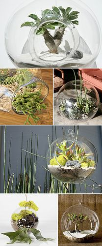 designvagabond: plant containers by tend living