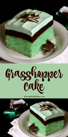 Grasshopper Cake from afarmgirlsdabbles. - A stunning dessert that's been a longtime family favorite, one I've enjoyed nearly all my life. This grasshopper recipe is mint and chocolate fudge perfection! Informations About Grasshopper Cake Mini Desserts, Easy Desserts, Delicious Desserts, Tiramisu Dessert, Oreo Dessert, Chocolate Fudge, Mint Chocolate, Chocolate Recipes, Vegan Chocolate