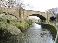 Brook and Bridge - Cherry Blossom Park photo by Virginia Varela