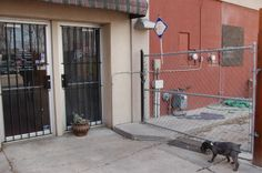 """The Backside of an Italian Restaurant. The metal rods and fence have to keep out """"the bad guys"""" Social Exclusion, Fence, Architecture Design, Garage Doors, Restaurant, Guys, Metal, Outdoor Decor, Home Decor"""