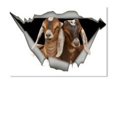 Discover Nubian Goat Sticker from Pets sticker, a custom product made just for you by Teespring. Nubian Goat, Our Kids, Goats, Stickers, Prints, Decals, Goat