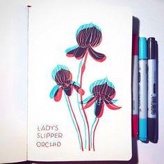 Julia Fink (@julia_gefinkelt) • Instagram-Fotos und -Videos Lady Slipper Orchid, Glitch, Womens Slippers, Orchids, Drawings, Videos, Painting, Instagram, Painting Art