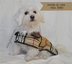 Mimi y Tara | Patrones de ropa para perros: Patrón de capa para perro