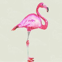 Flamingo Wallpaper - Casafina