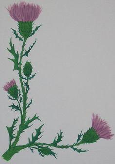 Symbol Tattoos, Celtic Tattoos, Celtic Tattoo Family, Scotland National Flower, Scotland Tattoo, Scottish Symbols, Scottish Thistle Tattoo, Thistle Flower, Drawing Clipart