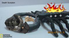 Scorpion destroying rome