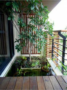 Park in balcony