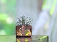 Mini Air Plant Holder Peach Copper Stained Glass Terrarium Cubed Glass Box Planter