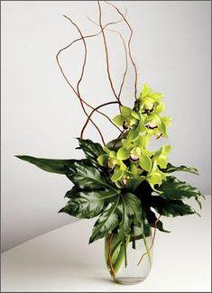 Image result for orchid arrangements modern