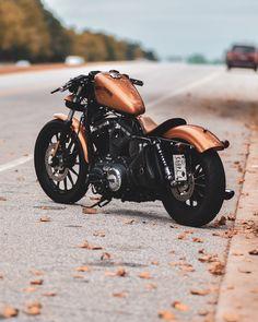 Harley Davidson 883, Harley Davidson Sportster 883, Custom Sportster, Harley Bobber, Harley Bikes, Bobber Motorcycle, Harley Davidson Motorcycles, Custom Motorcycles, 883 Harley