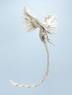 phoenix de ''NYANKO SENSEI''