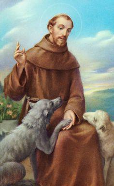 st francis of assisi Catholic Art, Catholic Saints, Patron Saints, Religious Art, Religious Quotes, St Francis Assisi, Saint Francis Prayer, Patron Saint Of Animals, St Therese Of Lisieux
