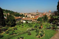 ROSE GARDEN - Florence This wonderful garden has a stunning view on the city and it houses about thousand types of plants, around 350 of ancient types of roses. Since September 11th it houses also twelve pieces of Jean Michel Folon, donated by his widow to the city of Florence.  #firenze #florence #italy #chianti #art #garden #rose #view
