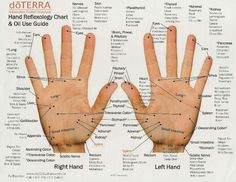 Hand Reflexology Chart & Oil Use Guide #infografía