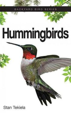 The glittering throat patch of the male Ruby-throated Hummingbird is a worthy adornment for this princely bird. And what else can captivate a bird watcher as much as a hummingbird's aerial acrobatics?