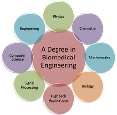 Here are some helpful subjects to take when working toward a degree in biomedical engineering.