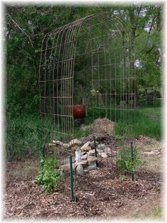 inexpensive arbor for my rose....it will be covered up quickly so you won't even know how ugly it is underneath lol