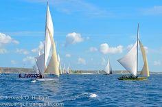 Anguilla boat race 2015
