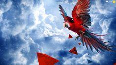 ara, Sky, parrot, Geometric Solids