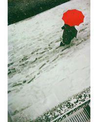 ニューヨークが生んだ伝説 写真家 ソール・ライター展【Lets】レッツエンジョイ東京