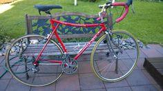 Olmo -80 maantiepyörä