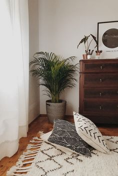 Home decor - bedroom - plants all over the house