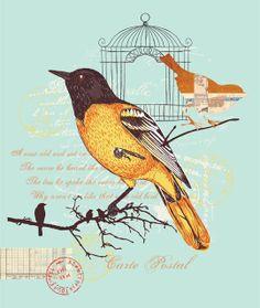 Emily Kiddy: Bird Inspired Prints - Trend - Spring/Summer 2014 - Part 3