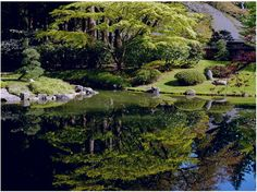 """today in Nitobe Garden - """"I  am in Japan,"""" 