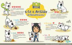 ระวัง 6 สัตว์มีพิษและวิธีช่วยชีวิตน้องหมา