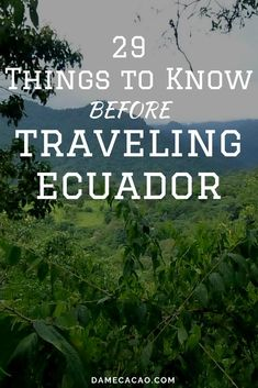 three months living in Quito and traveling the country on the weekends I've collected a tip or two (dozen) for first-time visitors to Ecuador. These are some of the mistakes you'll be glad you avoided! South America Destinations, South America Travel, Travel Destinations, Honduras, Solo Travel, Travel Usa, Ecuador, Costa Rica, Travel Guides