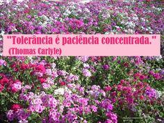 """""""Tolerância é paciência concentrada."""" (Thomas Carlyle)"""