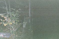 Pics of  real ghosts?Some you will have to look close to see the ghost.