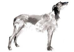 Sarah Maycock #illustration #graphisme #art #painting #dog http://lespapierscolles.wordpress.com/2013/05/28/sarah-maycock/