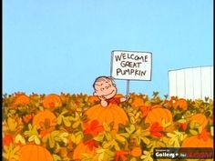 Welcome Great Pumpkin...This makes me Smile :)