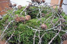 Mooskranz mit Lärchenzweigen Moss wreath with larch twigs Flower Hair Clips, Flowers In Hair, Yellow Flowers, Easter Tree Decorations, Easter Wreaths, Trendy Tree, Moss Wreath, Forest Flowers, Advent Wreath