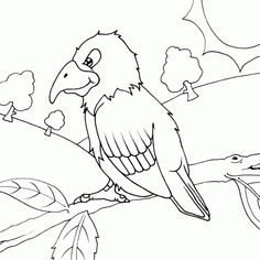 parrot on branch coloring page